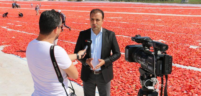 Kurutulmuş domates bütün dünyaya ihraç ediyor