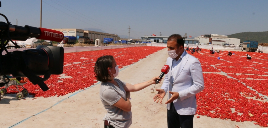 Torbalı plains turn red as tomatoes have been spread over for drying